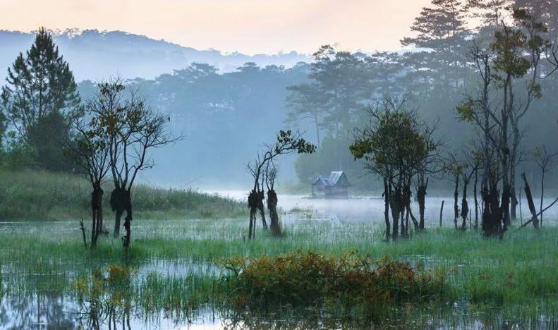 Hồ Tuyền Lâm Đà Lạt và những điều thú vị không phải ai cũng biết